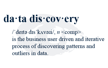 Data discovery definition